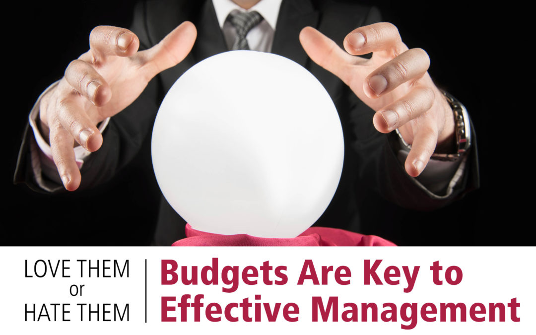 Love Them Or Hate Them: Budgets Are Key To Effective Management